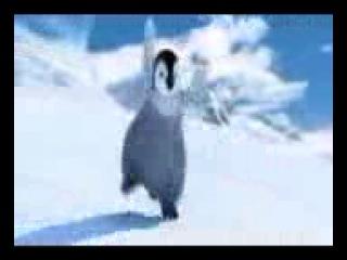 dansul pinguinului_001